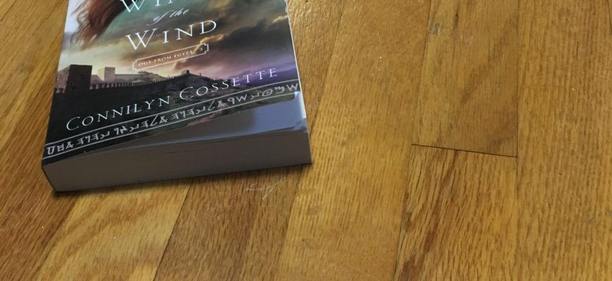 Book Recommendation: Wings of the Wind by Connilyn Cossette